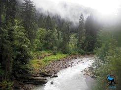 The river Breitach