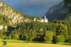 Neuschwanstein in the evening light