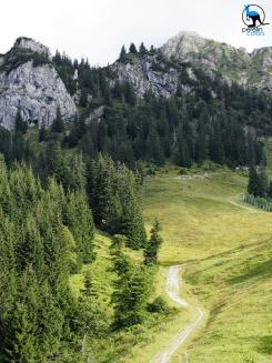 Hiking near Rohrkopfhütte