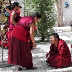 Monks debating at Sera monastery.