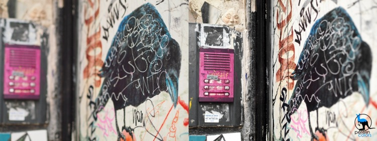 The topic of this picture is either the bird (left), or the pink of the door bells (right).