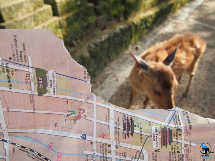 I used the grid AF of my old Pen camera to draw the attention to missing part of the map that has been eaten by the deer in the background.