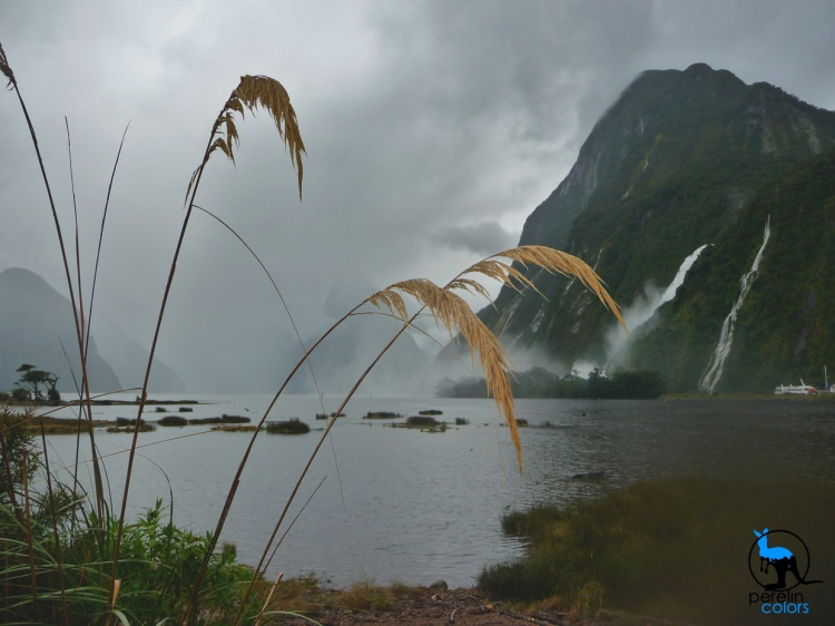 Milford Sound - Colours