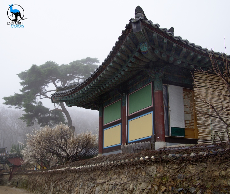Beomeosa temple on a rainy day, Korea 2015