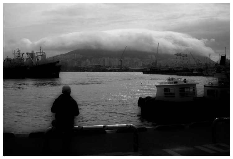 Keeping watch over Busan harbour