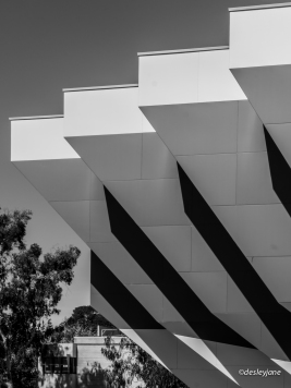 04_Canberra-15